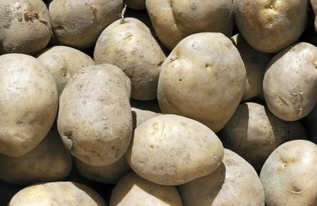 Fresh Potatoes Background  photo