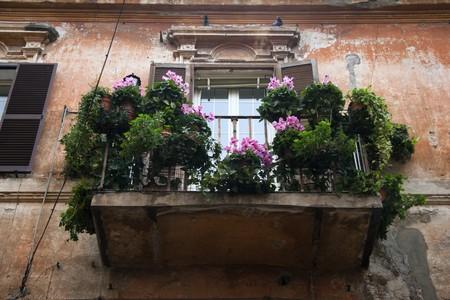 Balcony full of flowers. Tarquinia, Italy  photo