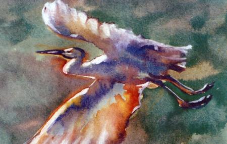 migrating: migrating cork  (ciconia ciconia Linnaeus),digital painting watercolor style Stock Photo