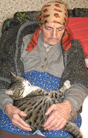 elder woman sleeping with a cat Stock Photo