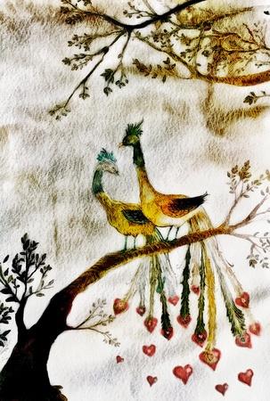 romantic peacocks illustration, engraving style