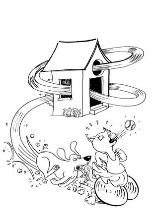 spat: dog chasing a cat