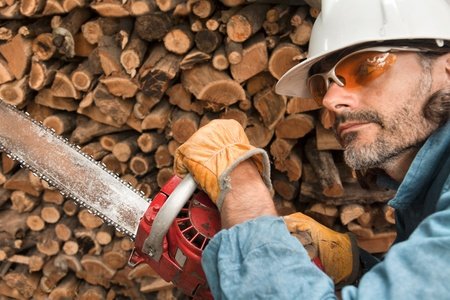 lumberjack close up with chainsaw, forest worker in action photo