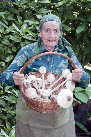 senior woman with a basket full of mushrooms photo
