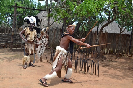 SHAKAZULU PARK, SOUTH AFRICA-NOVEMBER 15 2011: Zulu warrior shows an attack with his weapons at ShakaZulu Park ,South Africa on 15 November 2011 Editorial
