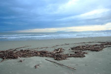 viareggio: Viareggio beach after sea storm in winter time, Tuscany Italy