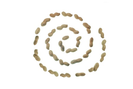 goober peas: Spiral shape line of Peanuts isolated over white
