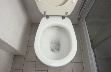 wc: Flush clean wc, water splash in toilet.