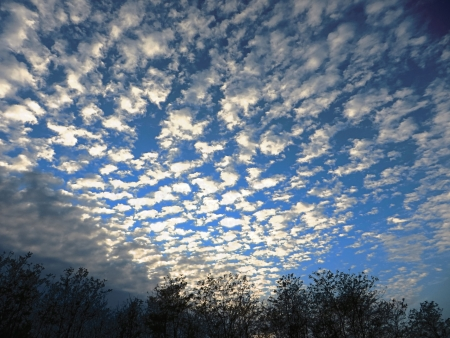 floccus: Cirrocumulus floccus cloudy sky at sunset, wide angle shot Stock Photo