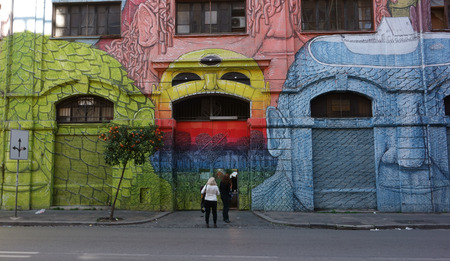occupied: ROME - FREBRUARY 28, 2015: The Occupied Building in via del Porto Fluviale street covered with mural paintings