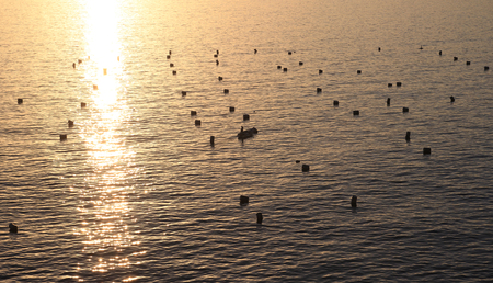 a Mediterranean mussel farm in Naples, ITALY Stock Photo