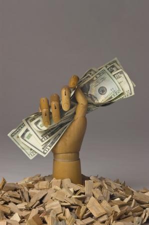 grasp: Wooden hand holding cash