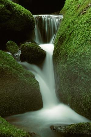 Een klein bergbeekje waterval door fel groen mos bedekte rotsen Stockfoto