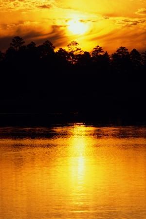 treeline: Orange sunset over lake