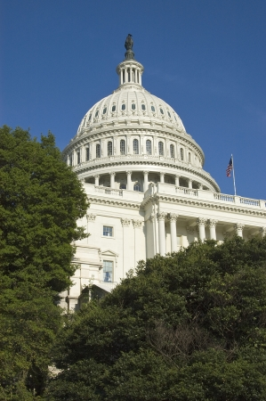 congressional: United States Capitol Building through trees Stock Photo