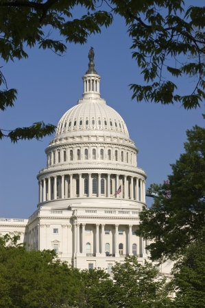 congressional: United States Capitol Building Throug Trees Stock Photo