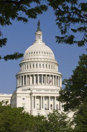 congressional: United States Capitol Building Throug Trees Stock Photo
