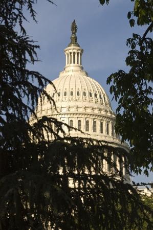 United States Capitol Building door bomen