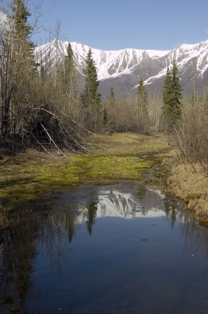Alaskan mountains reflecting in a calm pond Stock Photo - 16879864