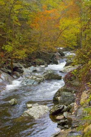 Een rivier in de Great Smoky Mountains lopen door een bos in de herfst kleur Stockfoto