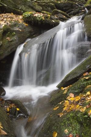 Een kleine beek waterval met mos bedekte rotsen en bladeren vallen