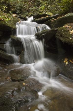 Een kleine bos waterval met mos bedekte rotsen