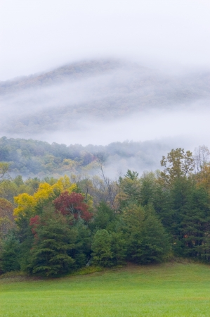 Heavy low clouds around a mountain with trees in fall color Stock Photo - 17034335