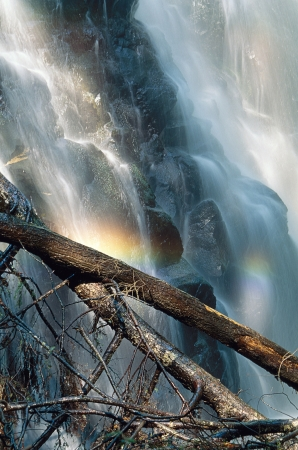 A waterfall with two logs in the forground and rainbow colors from the mist