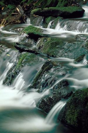 Mountain stream stroomt over mos bedekte rotsen, wazig water Stockfoto