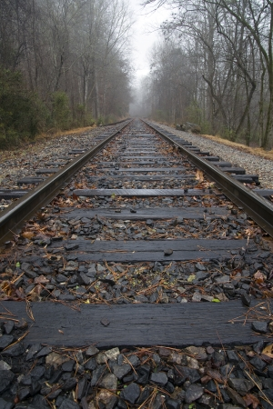 Train tracks leading into misty woods Stock Photo