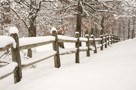 Splitrail fence with fresh snow and snow covered trees