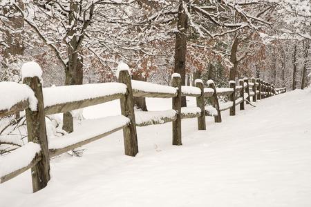 Splitrail hek met verse sneeuw en sneeuw bedekte bomen Stockfoto