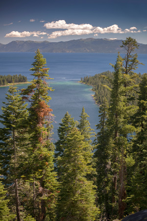 Lake Tahoe through trees with mountains in background Stock Photo - 74449365