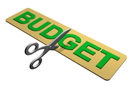 Cutting the Budget