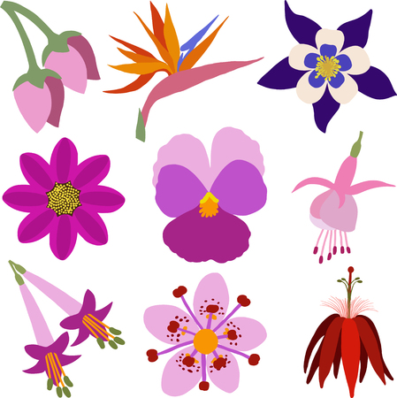 A set of colorful flower icons.