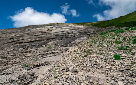 slate field nature on a mountain during summer sunny day brienzer rothorn Archivio Fotografico