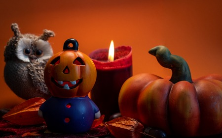 halloween autumn decoration with illuminated pumpkin figure head, pumpkin, cute owl and red candle on leaves orange background studio light