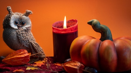 halloween autumn decoration with pumpkin, cute owl and red candle on leaves orange background studio light