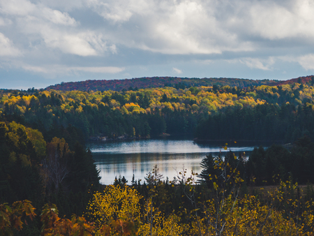 typical canadian fall landscape with coloful fall forest trees and lake during autumn, Algonquin Park, Canada Archivio Fotografico
