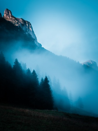 Misty landscape with fog covered forest during morning mountain scenery, switzerland alpstein