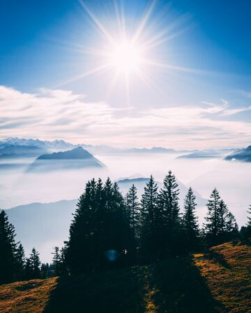 aerial Point of interest shot of pine tree with beautiful mountain scenery covered in fog with lake swiss alps rigi, sun shining directly in camera vertical