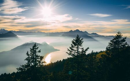 aerial Point of interest shot of pine tree with beautiful mountain scenery covered in fog with lake swiss alps rigi, sun shining directly in camera sunny