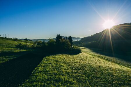 aerial drone view of morning hour over peaceful countryside with green morning dew and agricultural fields, sun shining directly into camera, switzerland Archivio Fotografico - 131919702