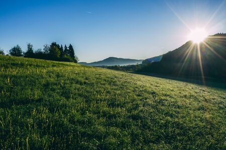 aerial drone view of morning hour over peaceful countryside with green morning dew and agricultural fields, sun shining directly into camera, switzerland