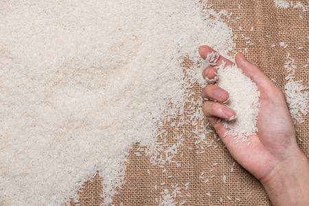 White Rice. Jasmine Rice, Thai Rice, Raw Rice. Stock Photo