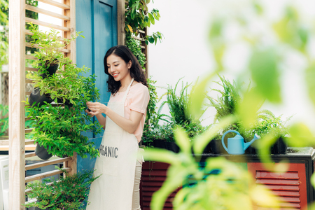 Young professional woman in apron cut green bush clippers in the garden Stock Photo