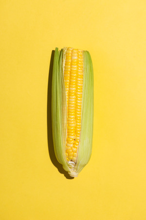 Top view of one corn on yellow background.