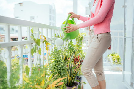 Beautiful happy young housewife watering the flower at home Standard-Bild