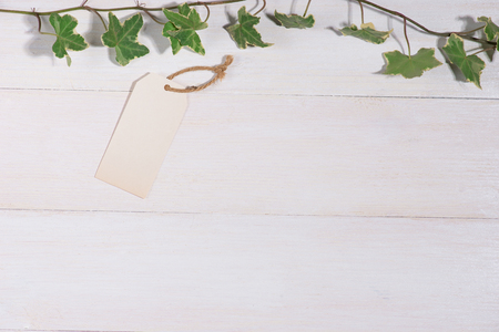 Green leaves with blank tag on wooden background Stock Photo
