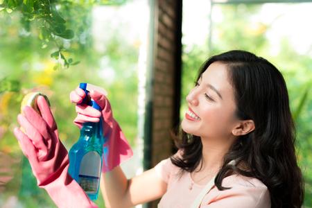 笑顔の若いアジア女性主婦洗浄ウィンドウ